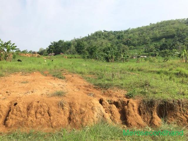 land on sale near damauli tanahu nepal - 3/3