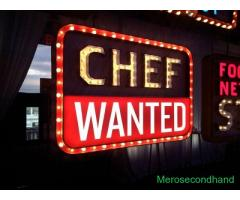 Cook wanted cook wanted