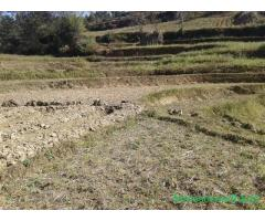 Land on sale at panauti - Image 3/4