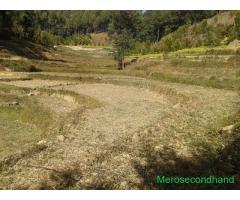 Land on sale at panauti - Image 4/4