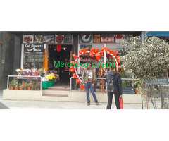 Aquarium / Cut Flowers/ Flower plants / Gift shop on sale at pokhara nepal