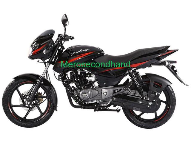 150 pulsar bike on sale at palpa nepal - secondhand - 1/1