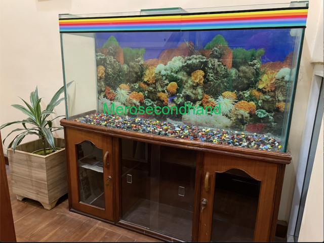 Aquarium with wooden showcase stand - 1/3