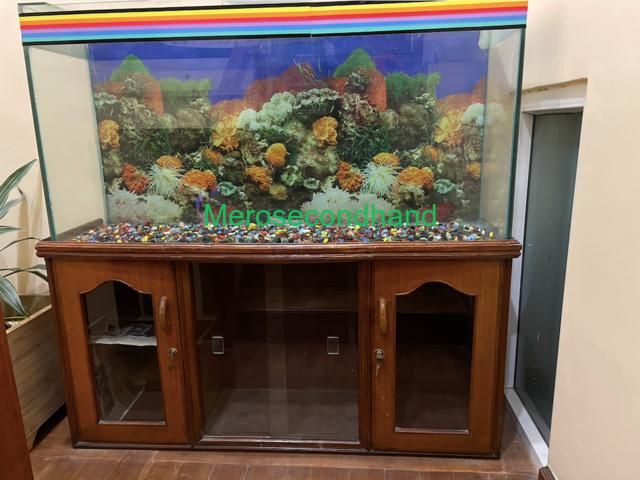 Aquarium with wooden showcase stand - 3/3